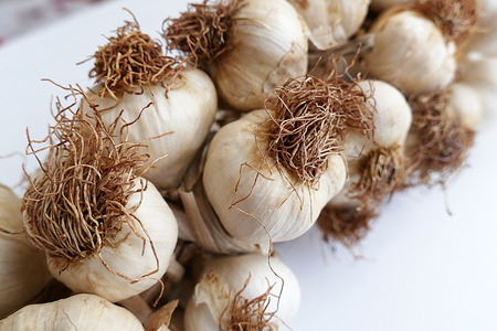 close-up of garlic in bulk