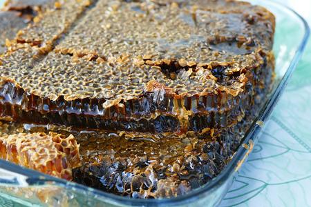 close-up of natural honeycomb honey