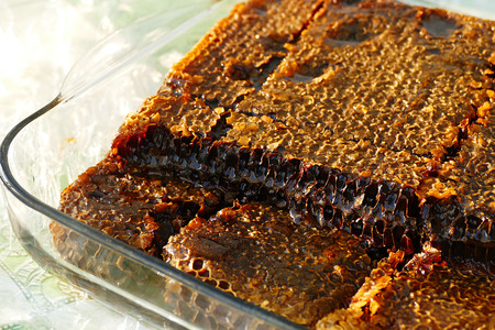 close-up honeycomb honey pictures