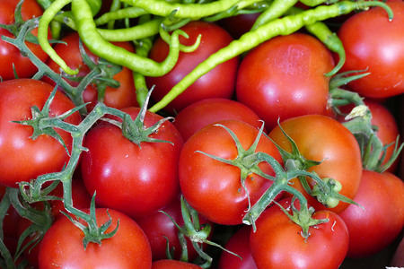 natural tomatoes and fine sweet peppers stand together,