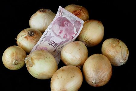 Dry onion and Turkey money on black background
