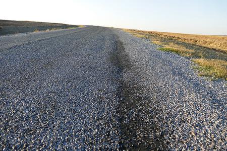 bituminous asphalt road