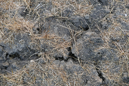 cracked and splitting fields,