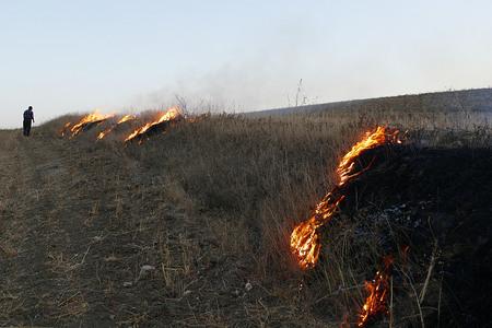a man burns land, harms the nature Banco de Imagens
