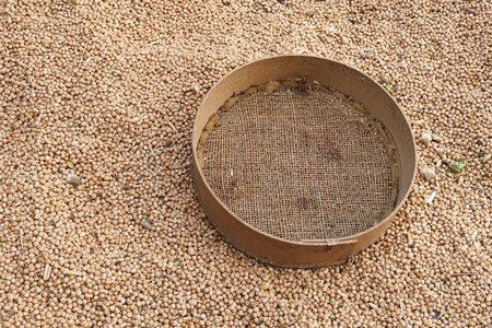 dried chickpeas and manually sieve,