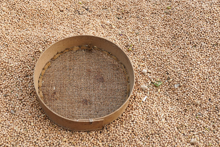 dried chickpeas and manually sieve