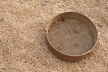 dried chickpeas and manually sieve Stockfoto