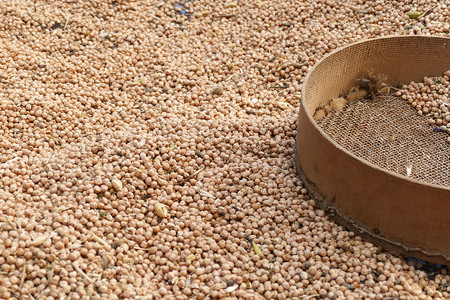 hand sieve and chickpeas