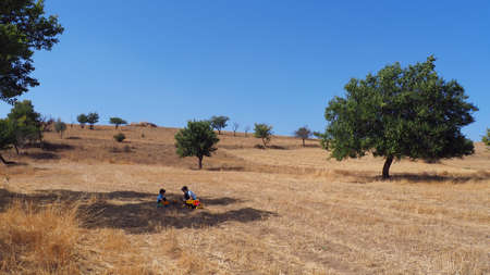Children playing in a field, free kids playing against coronaviruses, 写真素材