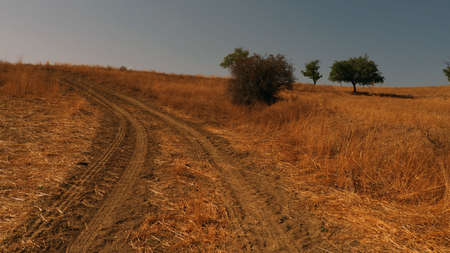 In continental climate, dirt road, path stabilized road, off-road road,