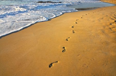 footsteps on the beach and water photo