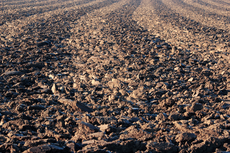 ploughed field detail during winter time