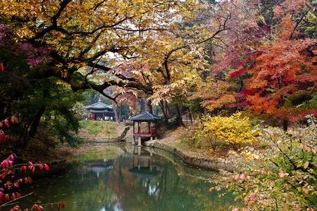 Seoul: Autumn foliage and pavilion