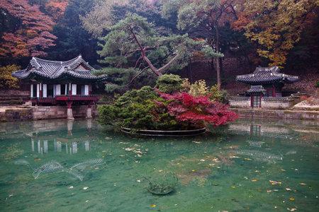 View of Secret Garden