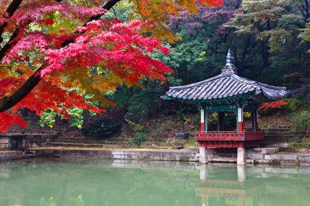 Autumn foliage and gazebo
