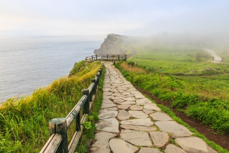 Pathway at shore with fog Stock Photo