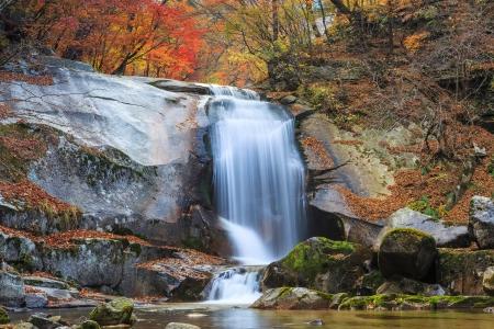 Autumn foliage and cascade