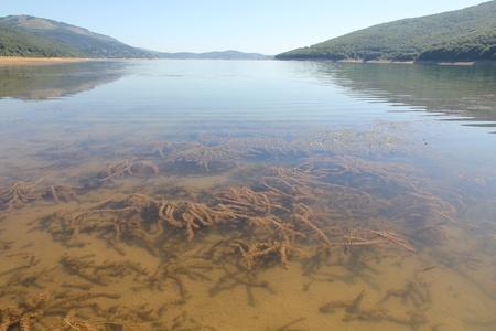 Mavrovo Lake Macedonië Stockfoto - 10879022