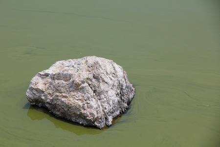 rock in lake with algae photo