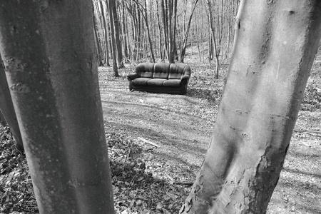 dwaalspoor bank in het bos Stockfoto - 13084127