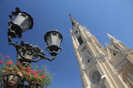 Saint Mary kathedraal, Novi Sad, Servië Stockfoto - 14977163