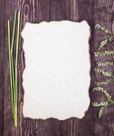 papel quemado: Capítulo de los tallos y flores silvestres blancas. Papel quemado viejo. Lugar vacío. Marco. Tarjeta.