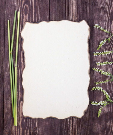 papel quemado: Frame from the stems and white wildflowers. Old burned paper. Empty place. Frame. Card.