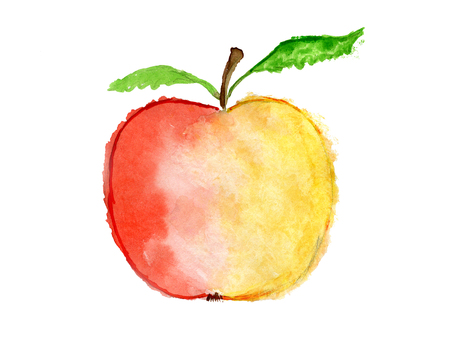Watercolor apple with sloppy contours
