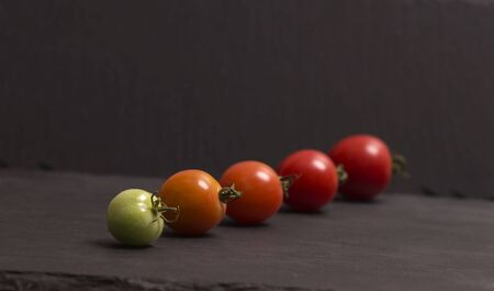 Ripening stages of tomato. Banco de Imagens