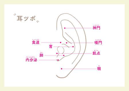 Ear points for beauty_1