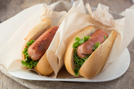 hotdogs: Two hotdogs on plate rustic horizontal selective focus Stock Photo