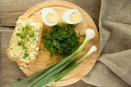 sandwitch: Toast with egg salad horizontal selective focus top view