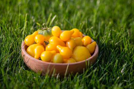 An images of yellow tomatoes on a wooden plate