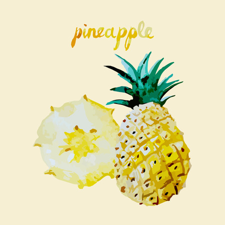 Lettering the text juicy fresh sweet pineapple isolated Illustration
