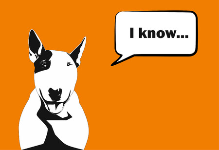 A bull terrier with a balloon for the text on a bright orange background