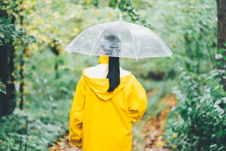 Attractive unrecognizable young girl in yellow raincoat walking in park with transparent umbrella, autumn day. Back view