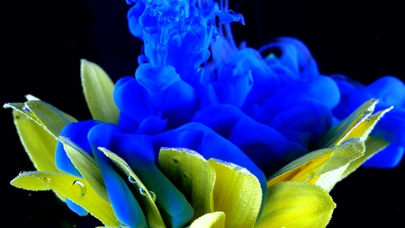 Yellow flower underwater with blue Ink reacting and creating abstract cloud formations.