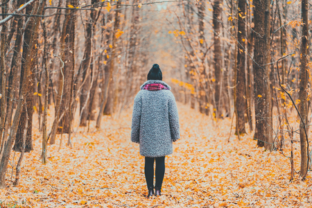 Young woman standing alone along trail in autumn forest. Back view. Travel, freedom, nature concept. Banco de Imagens