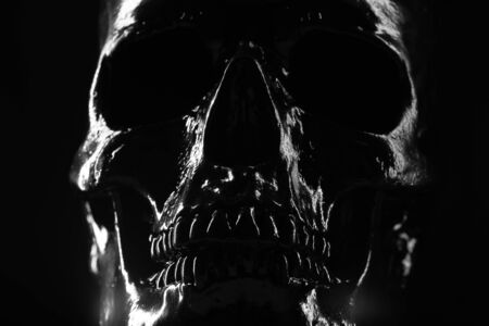 Model of human skull painted with black on dark background with illumination. Concept of fear and horror, Halloween celebration. Copy space