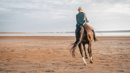 Woman rides horse on beautiful autumn nature landscape by river or lake. Concept of farm animals, training, horse racing