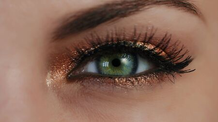 Extreme close up of human eye iris. Female with beautiful makeup, glitter shadows and false lashes. Womens green eye contracting