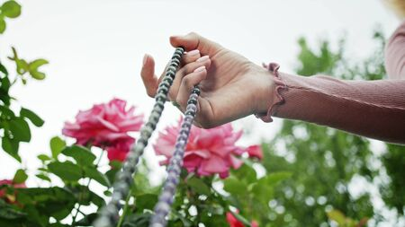 Woman lit hand close up counts rosary - malas strands of gemstones beads used for keeping count during mantra meditations. Girl sits on summer nature