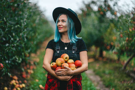 Blue haired woman picked up a lot of ripe red apple fruits from tree in green garden. Organic lifestyle, agriculture, gardener occupation Zdjęcie Seryjne