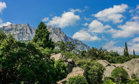 Zhangjiajie Forest Park. Gigantic pillar mountains rising from the canyon.