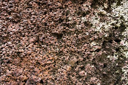 redbrick: Porous stone background 02