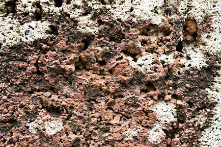 redbrick: Porous stone background 01
