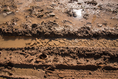 sun track: wheel track on mud with sun reflection in the water. Stock Photo