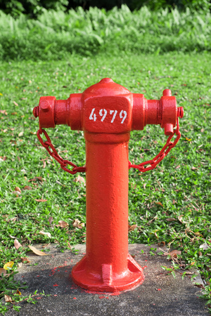 Fire hydrant with grass background