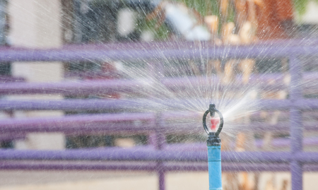 irrigating: Sprinkler watering in the garden. Stock Photo