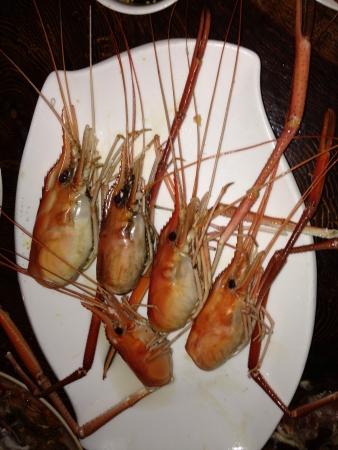 grosse tete: Big crevettes de t�te
